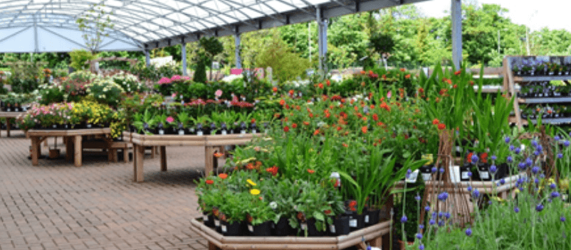 8 Impressive Ways to Growing more in Your Garden Space
