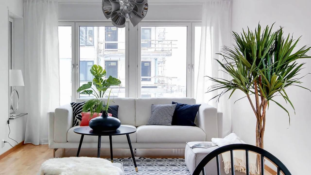 Incorporate Houseplants In Your Living Room